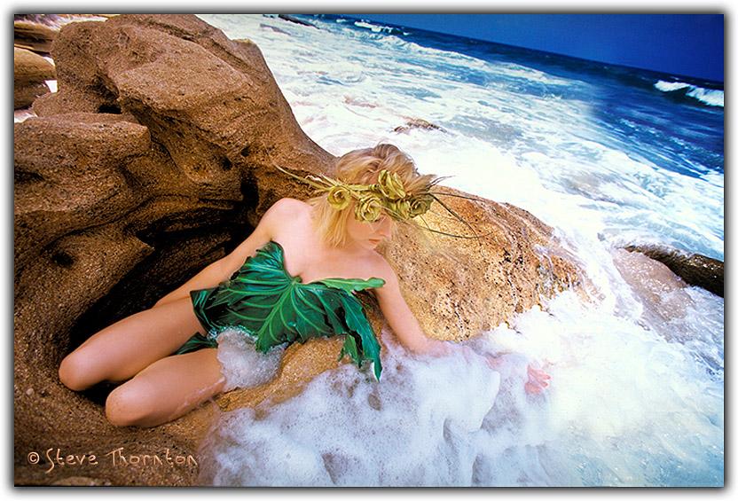 https://www.stevethornton.com/MM_Images/photo-of-the-day/51-2102-Copyright_Steve_Thornton.jpg